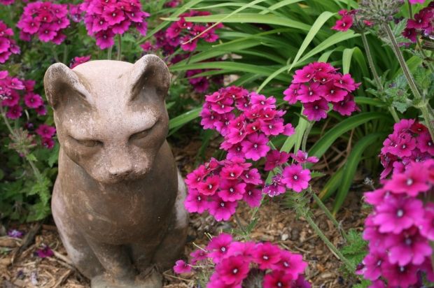 Purple Flowers and Cat Statue