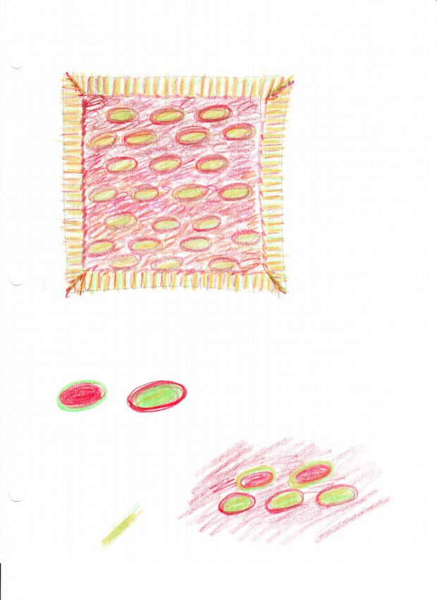 Pillow_Design1_Jan2012 001